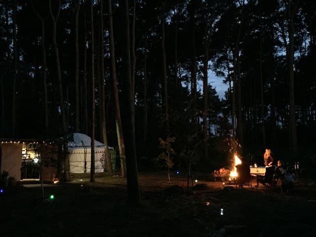 North Norfolk Yurt