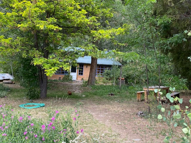 Secluded Farm Cabin near Taos, hot tub, hikes, 4-5