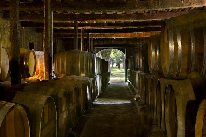 Legendary  cellar of Armagnac