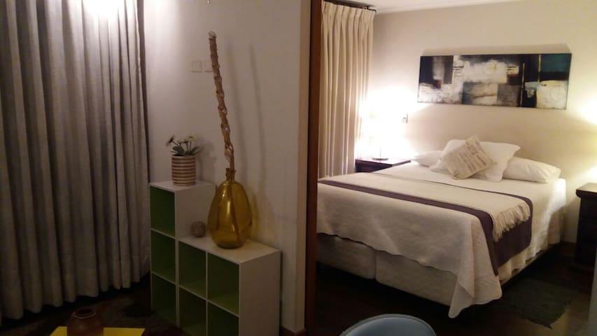 Las Condes 1D un dormitorio