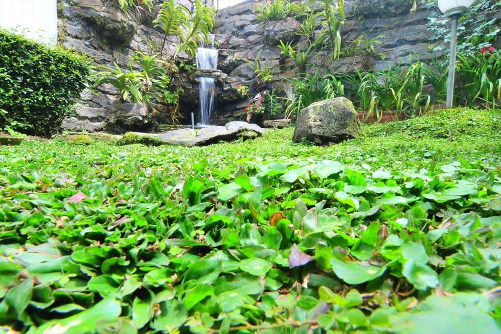 Air Terjun Taman