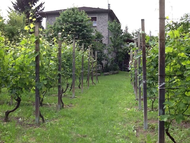 Villa di campagna - Traona - Apartment