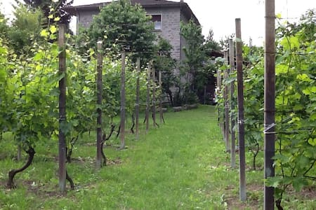 Villa di campagna - Traona - Huoneisto