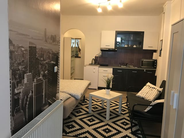 Zagreb Charming studio apartment with free parking