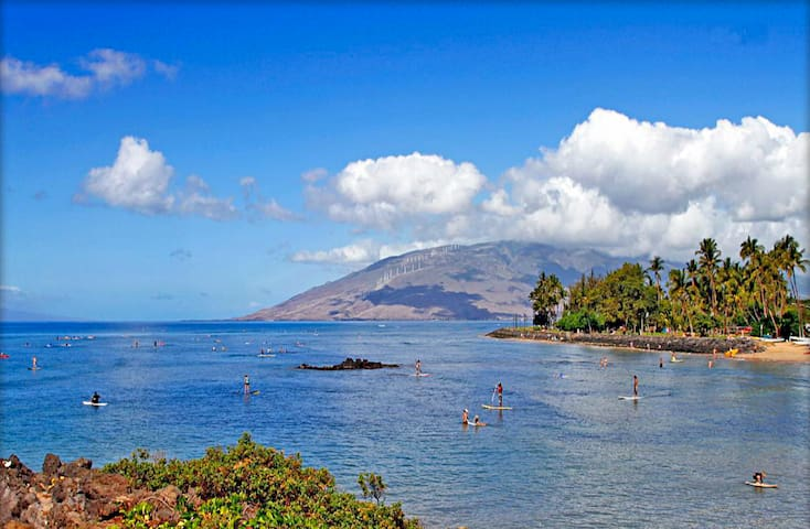 Cove Park is the Best Surfing and Stand-Up Paddling spot in Kihei, and it is just a half a block away.