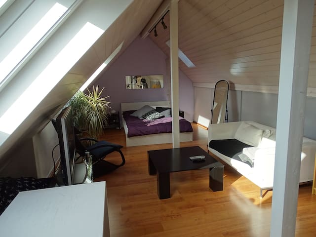 Sunny and spacious room - Baar - Apartment