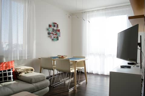 Quiet flat in city center with swimming pool