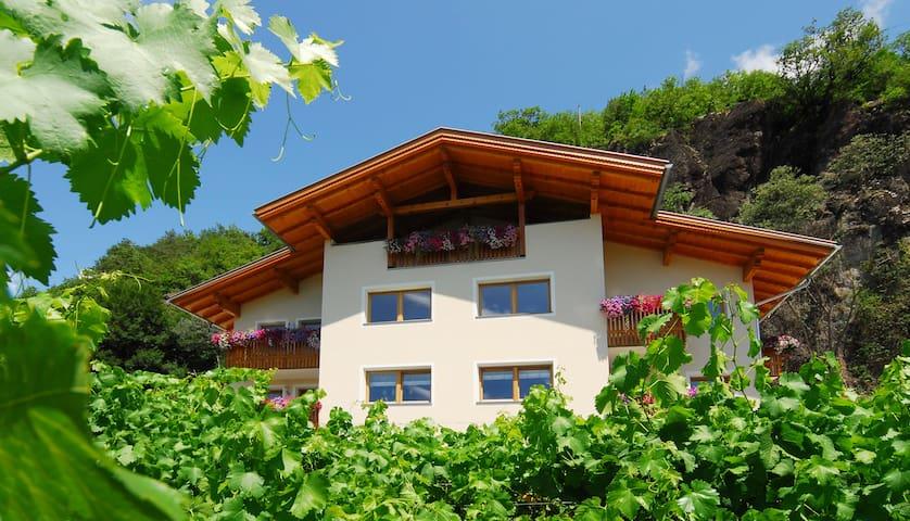 Sonniger Südhang, inmitten Weinreben&Apfelbäumen - Kastelruth - Departamento