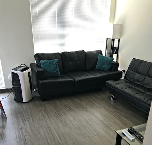 Beautiful 1 BR Apartment on Seattle