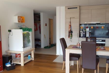Privatzimmer mit eigenem Bad bei Flims/Laax/Falera - Ilanz - Lejlighed