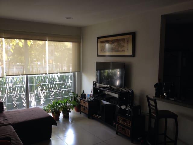 Cozy- close to Embassies in Polanco - Polanco