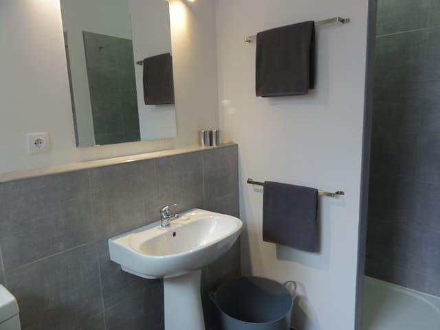 la première salle d'eau (douche)