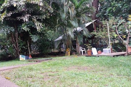 The Jaco Surf Club Jungle-house - Jacó