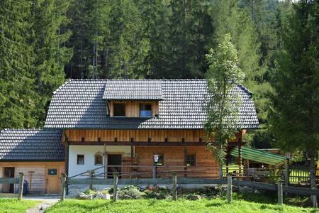 Ferienhaus Dirnbacher