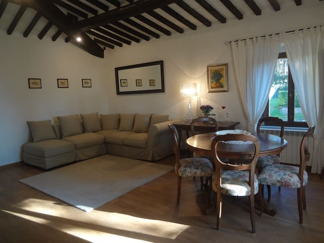 IL PINO - collesalvetti - Apartment