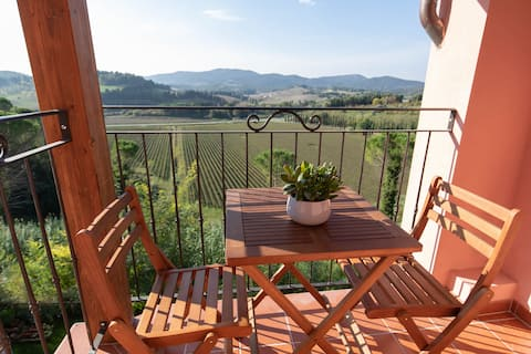 vineyards views attic in Tuscany countryside