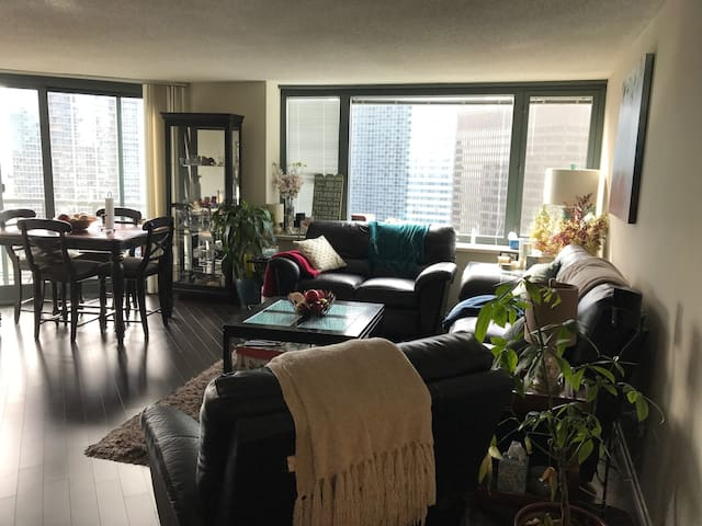 Warm &Cosy Loft with amazing view in Streeterville - Chicago - Apartamento