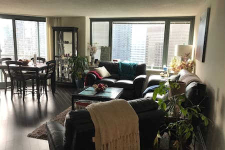 Warm &Cosy Loft with amazing view in Streeterville - 芝加哥 - 公寓
