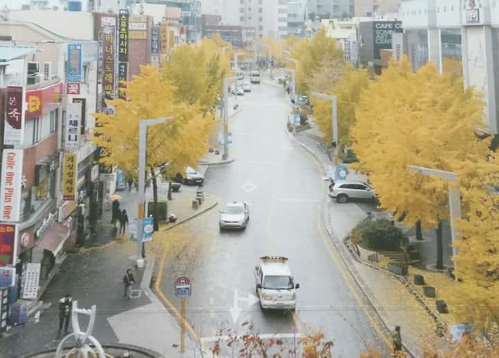 진진하우스 3 , JinJin-House 3 ,  서면역 도보 5분