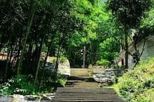 通向碧云寺的石阶