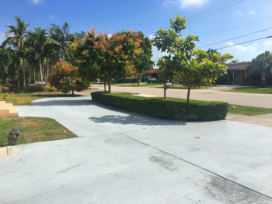 Parking in the front up to 3 cars. Mango Trees.