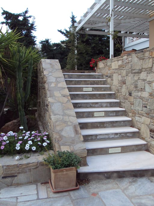 Climb the steps to your dream house