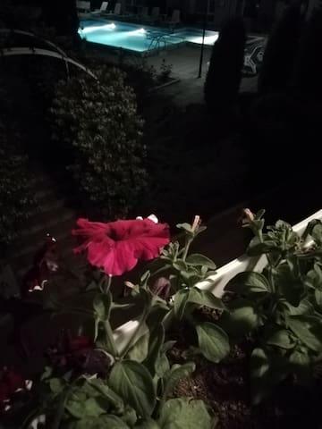 Вид с окна ночью