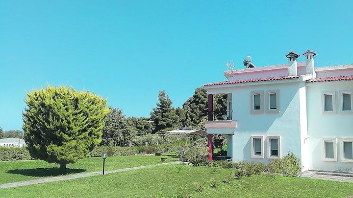 COZY HOUSE IN A QUIET NEIGHBORHOOD PALIOURI REGION