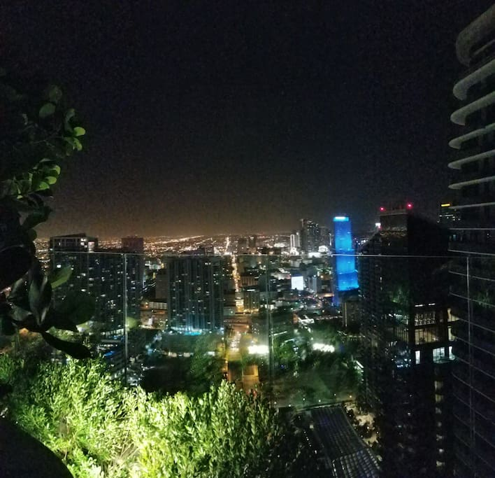 City skyline view. Best view in the city