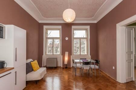 Sunny apartments in Prague centrum