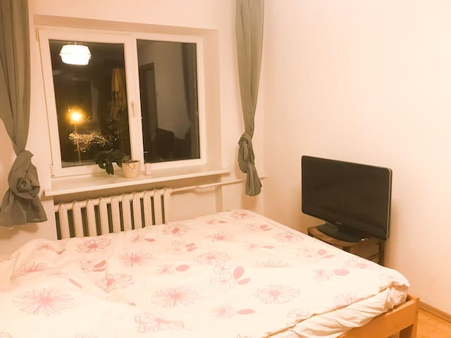 Cozy apartment in the heart of Vilnius!
