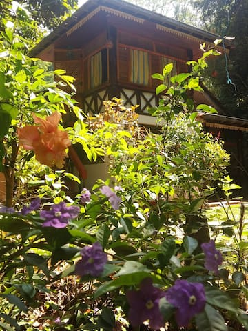 HOME STAY JUNGLE VILLAGE - Rambukkana - บ้าน