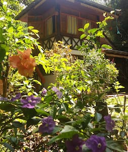 JUNGLE VILLAGE HOMESTAY - Rambukkana - Hus