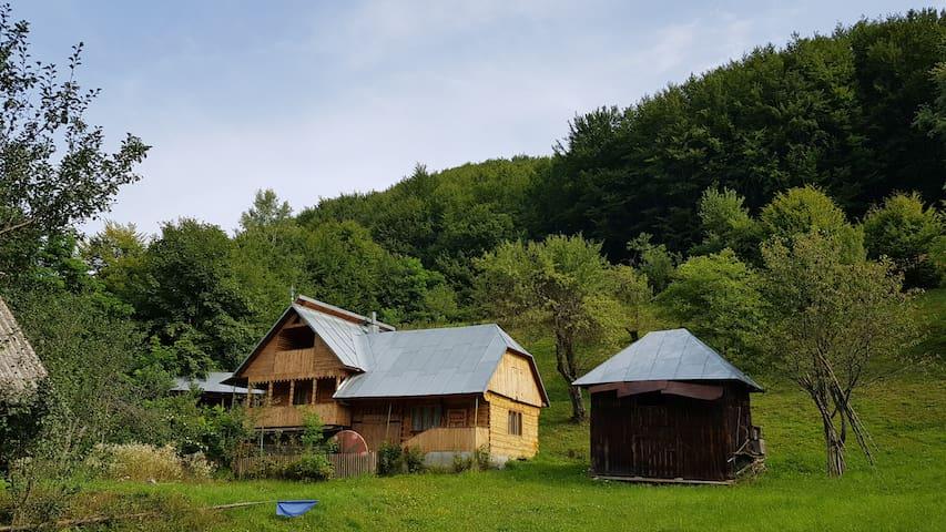 Casa de vacanta in Maramureș in Natura
