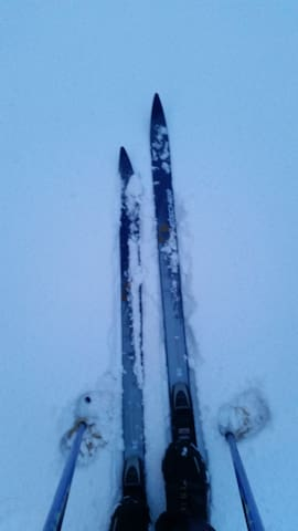 You can borrow our cross-country ski.