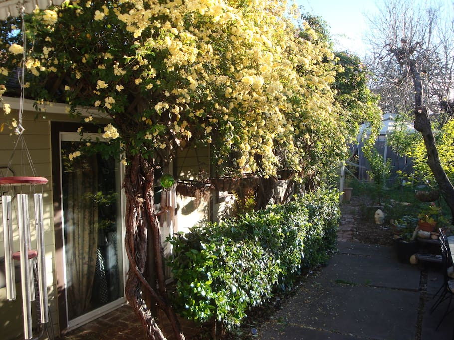 Entrance to the Guest House with roses in bloom