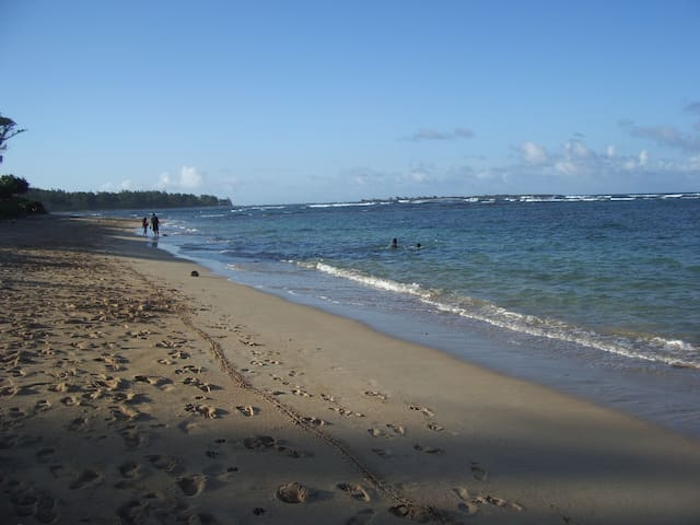 Beach side studio - Laie - Apartment