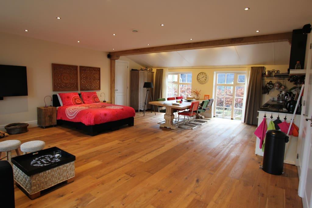 Grote woon/slaapkamer met compleet ingerichte keuken, eettafel,  tv/zithoek en aangrenzende badkamer (deur naast bed)