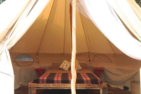 Flax Bush Tent beachfront glamping - Karikari Peninsula