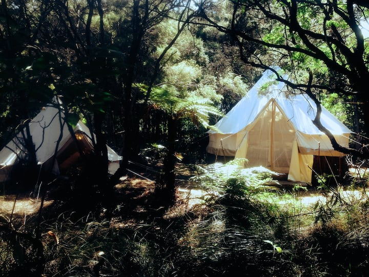 Boutique beachfront glamping tents