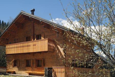 Carnia Zoncolan - charming villa - Povolaro - Apartemen