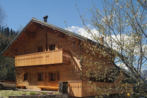 Apartments with sauna - Dolomiti Village- Zoncolan