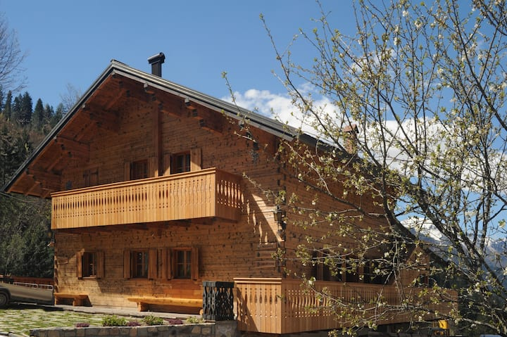 Apartments with sauna - Dolomiti Village- Zoncolan
