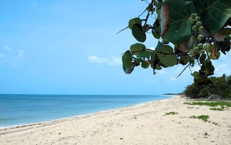 Habana beach house. playas del este - Havana - Dům