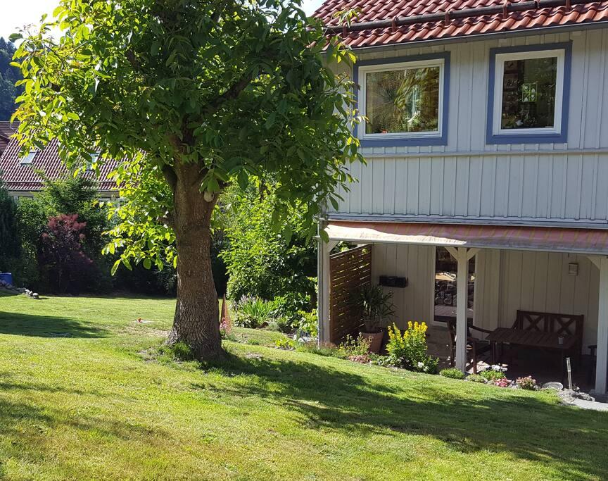 Terrasse mit Teil des Garten