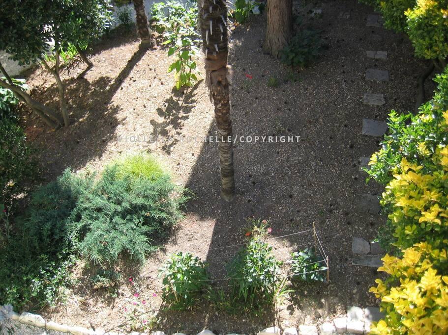 Appartement la rochelle centre cour jardin arbor e for Entretien jardin la rochelle