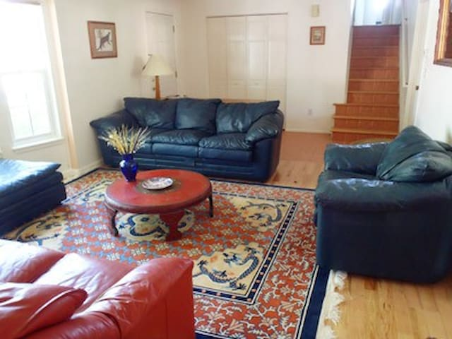 Living room with blue and terra cotta leather couches and chairs, Chinese dragon rug, bay window.