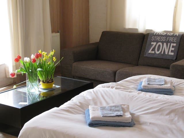Deluxe Room with Private Bathroom  - Valthermond - Bed & Breakfast