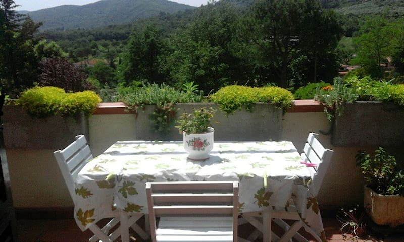 Hills of Tuscany-25min from Florence - Cellai - Apartment
