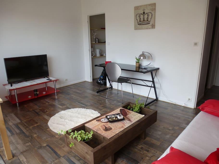 Bureau, télévision,  table basse avec plantes, canapé lit de taille 160 de large et confortable.